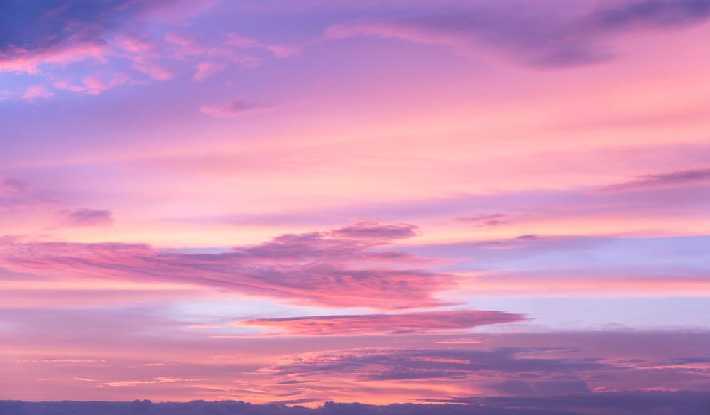 El poder del color rosa en tu vida