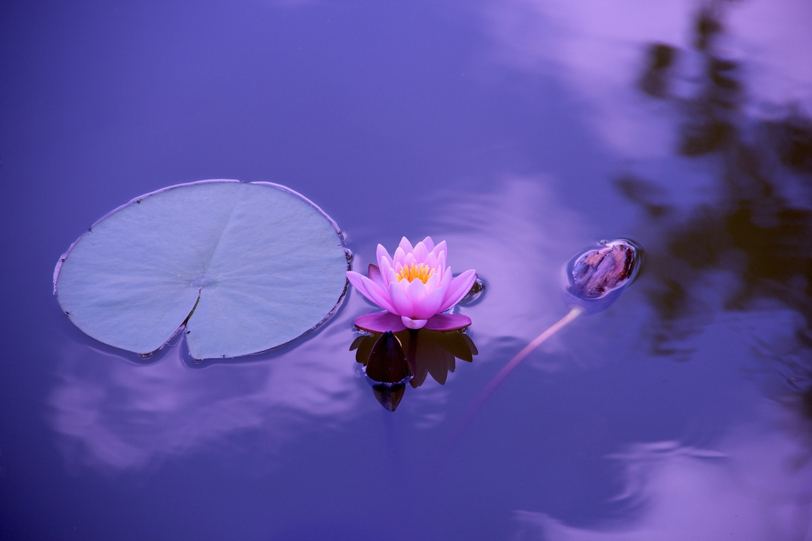 Meditación: la magia que surge desde tu alma